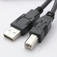 USB A Type Male with USB B Male