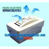 Non-Electric Humidifier