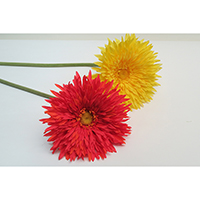 Gerbera Spray Single