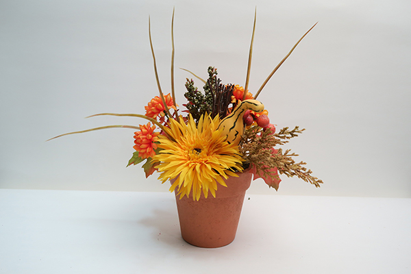 Autumn Potted Flower