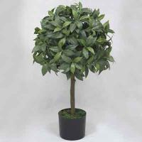 30 inches Bayleaf Single Topiary on Plastic trunk in pot # Green, 12286