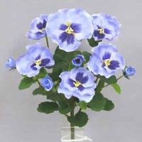 Pansy bush 14 inches # Blue