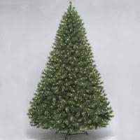 Silver fir 7.5' ltd tree
