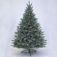 Sherwood Blue Spruce 5' Tree