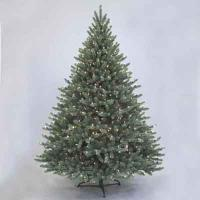 Sherwood Blue Spruce 6' Ltd Tree
