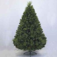 Chester Pine 6' Tree