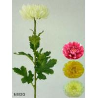 29 inches Single fuji mum bud w/12 lvs. (coating stem)