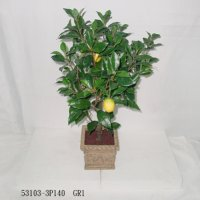 3' LEMON TREE W/POT