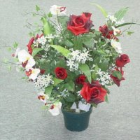 Sell 67 CM ROSE/ROSE BUD/ORCHID BUSH X 25