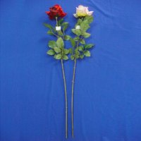 Sell 84 CM KING ROSE W/5 LVS