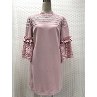 Dress with Lace Short Sleeve