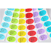 Size Sticker (Multi-Size, Color by Size), Adhesive002