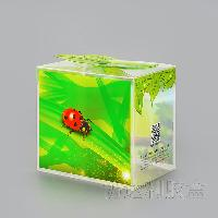 Clear Gift Box