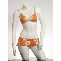 Ladies Bra & Bra Set 007