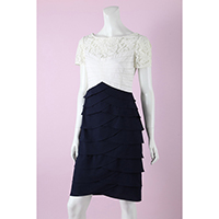 Lace with Crepe Knee Length Dress
