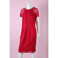 Red-Lace Knee Length Dress