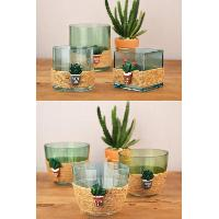 Coir Glass Vase/Succulent Holder, 2GH1013