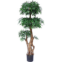60 inches UV Resistant Plastic Ruscus Tree x 5w/ 2520Lvs.