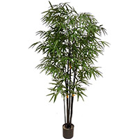 72 inches UV Resistant Plastic New Bamboo Tree x12 w/1365 Lvs.