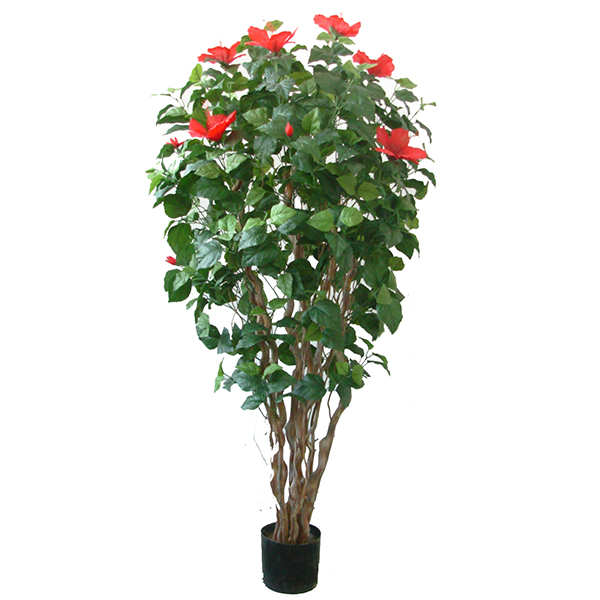 60 inches Hibiscus Tree w/13 Flowers, 604 Lvs.