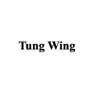 Tung Wing Enterprises Ltd.